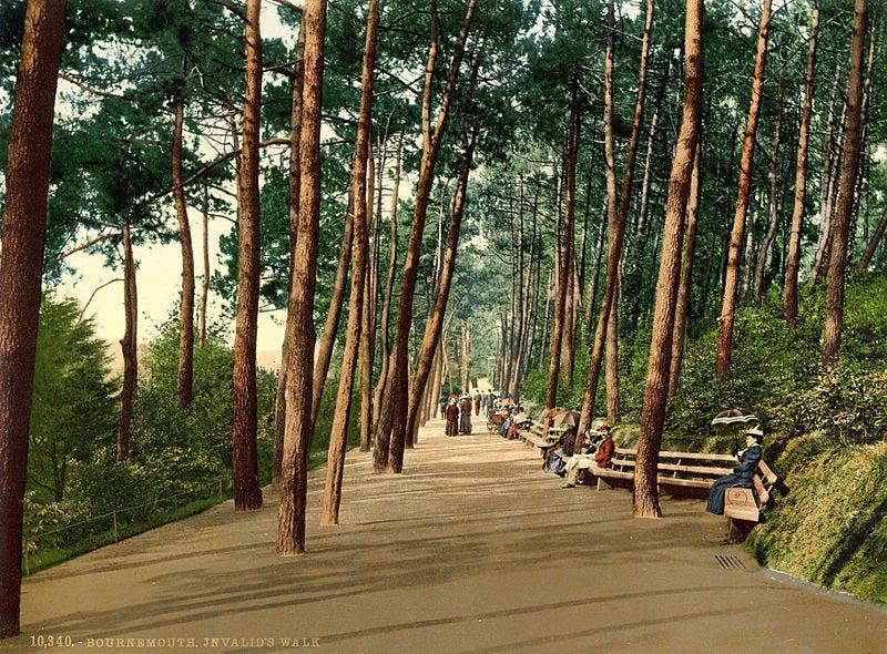 File:Invalids' walk, Bournemouth, Dorset, England, 1890s.jpg
