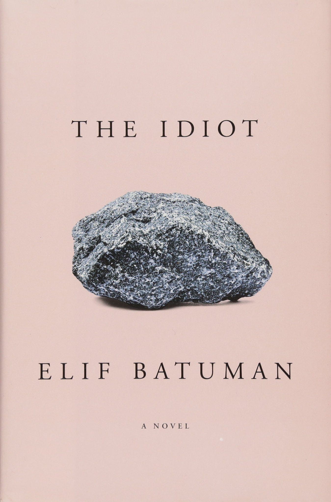 Image result for book the idiot
