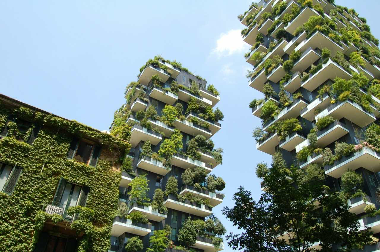 Green roofs and walls image
