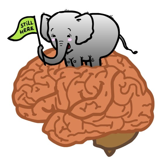 The Animated Woman: Elephant In the Brain