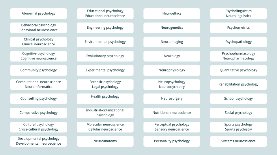 40 major fields of psychology and neuroscience - banner image