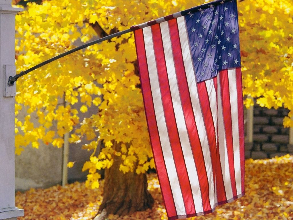 USA American Flag In Autumn | American flag images, American flag ...