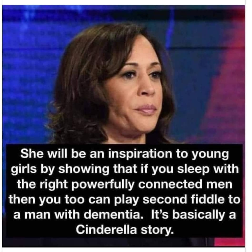 Image may contain: 1 person, text that says 'She will be an inspiration to young girls by showing that if you sleep with the right powerfully connected men then you too can play second fiddle to a man with dementia. It's basically a Cinderella story.'