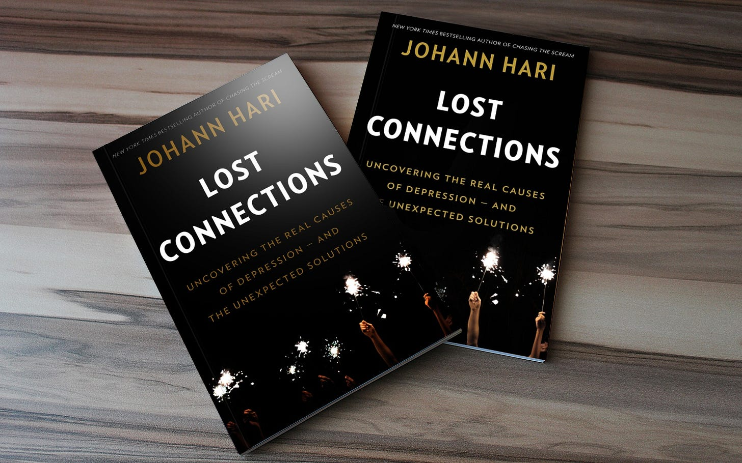Lost Connections – Uncovering the Real Causes of Depression – and the  Unexpected Solutions