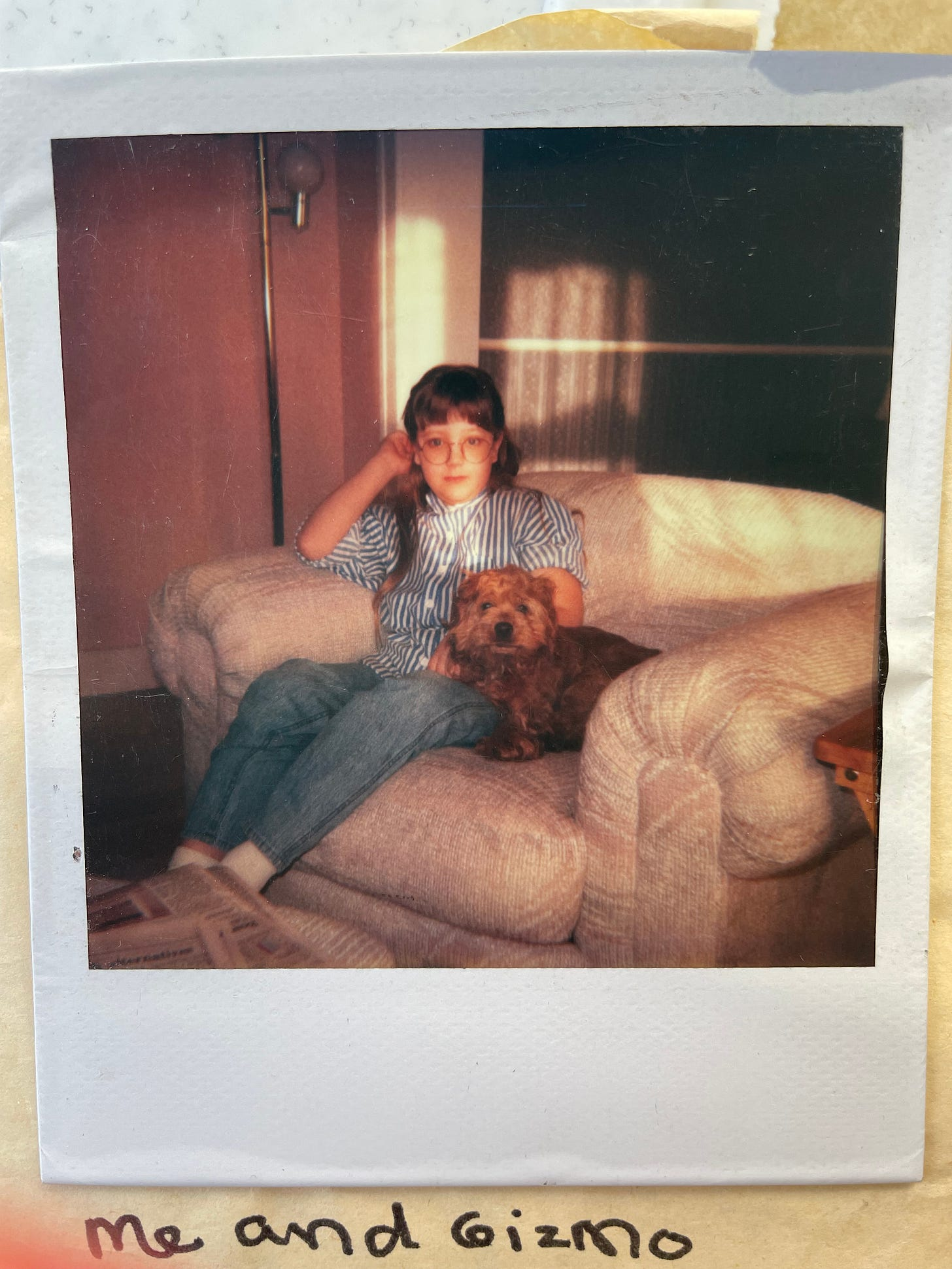 Young girl in glasses sits in a white armchair next to a scruffy cocker spaniel puppy.