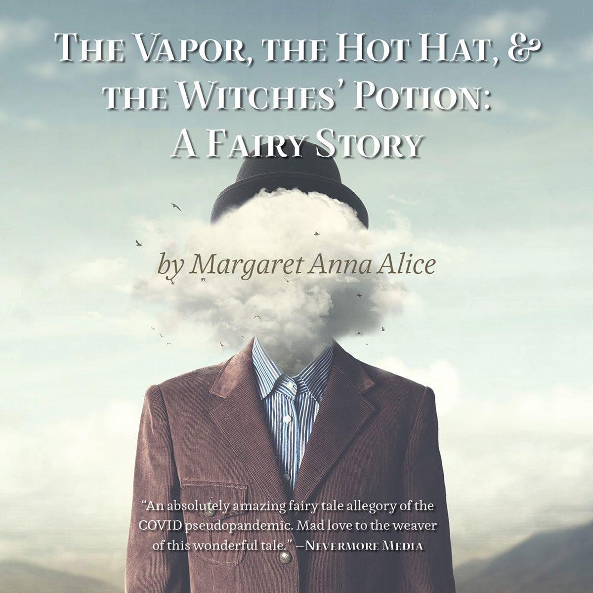 The Vapor, the Hot Hat, & the Witches' Potion: A Fairy Story (Book Cover)