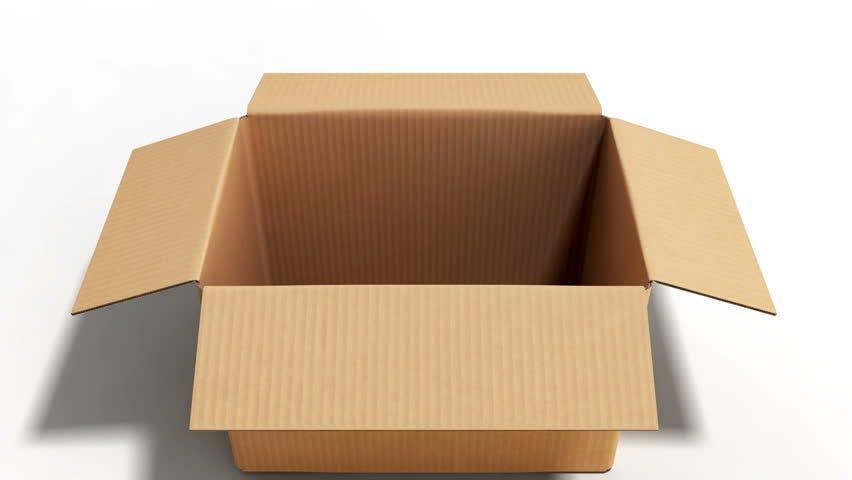 Open Cardboard Box On White : стоковые видео (без лицензионных платежей)  32554141 | Shutterstock