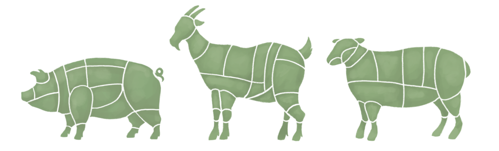 Butcher Illustrations - Pork, Goat and Lamb