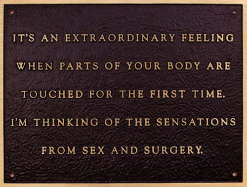 Image result for jenny holzer sex and surgery