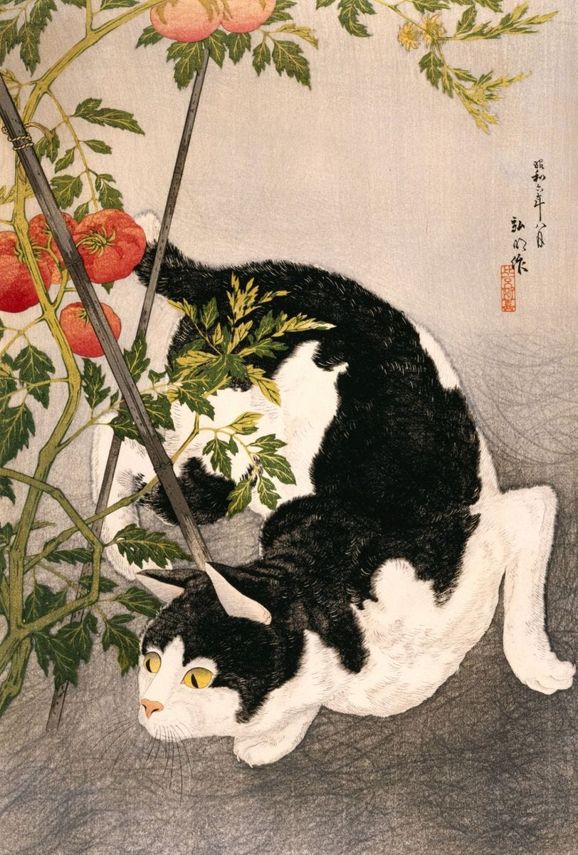 Artwork Title: Black Cat and Tomato Plant - Artist Name: Takahashi Hiroaki
