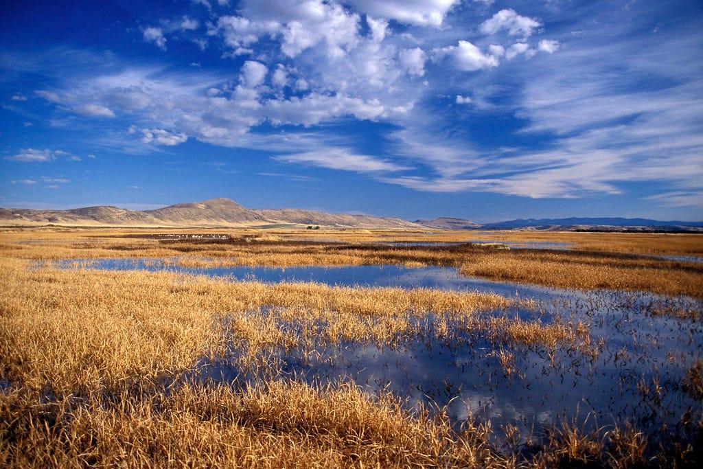Lower Klamath Lake