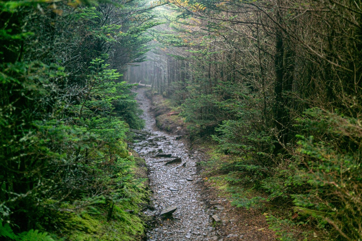 PODCAST: Tragedy on the Appalachian Trail - Backpacker