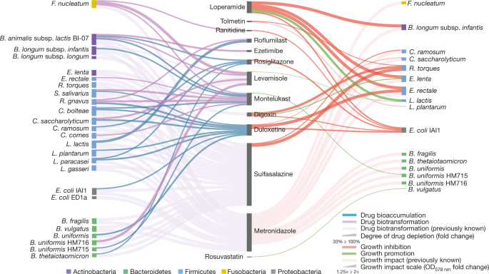 Bioaccumulation of therapeutic drugs by human gut bacteria | Nature