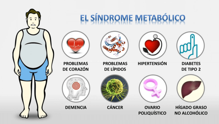 Síndrome metabólico: un problema de salud que no da la cara | Periodistas  en Español