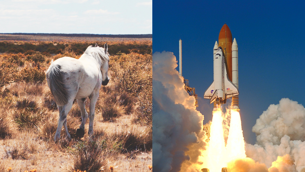 STORY.FUND - Space Shuttle and the width of a horse's ass If...