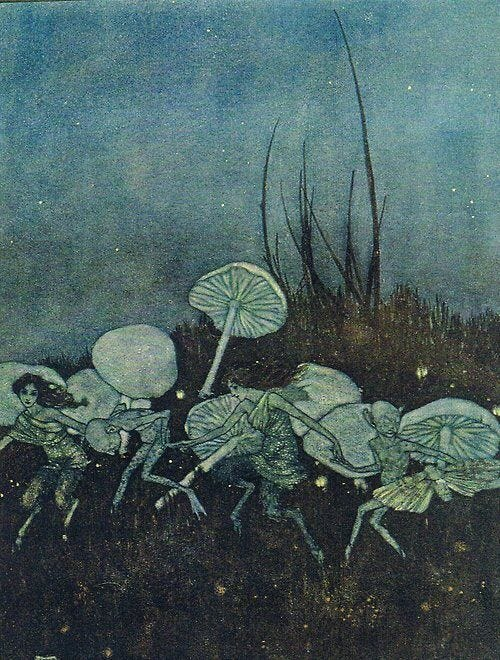 Botanarchy - Choose Your Illusion: Psychotropic Fungi Spores, Visions, Hauntings, and Ghosts