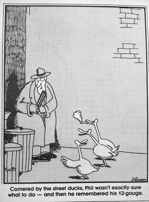 May be a cartoon of text that says 'Cornered by the street ducks, Phil wasn't exactly sure what to do and then he remembered his 12-gauge.'