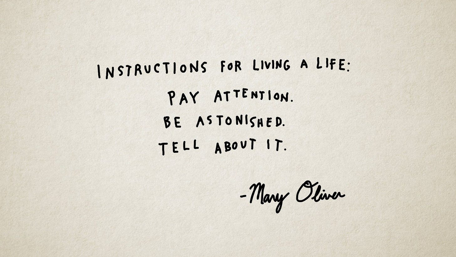 """Instructions for living a life: Pay attention. Be astonished. Tell about  it."""" -Mary Oliver 
