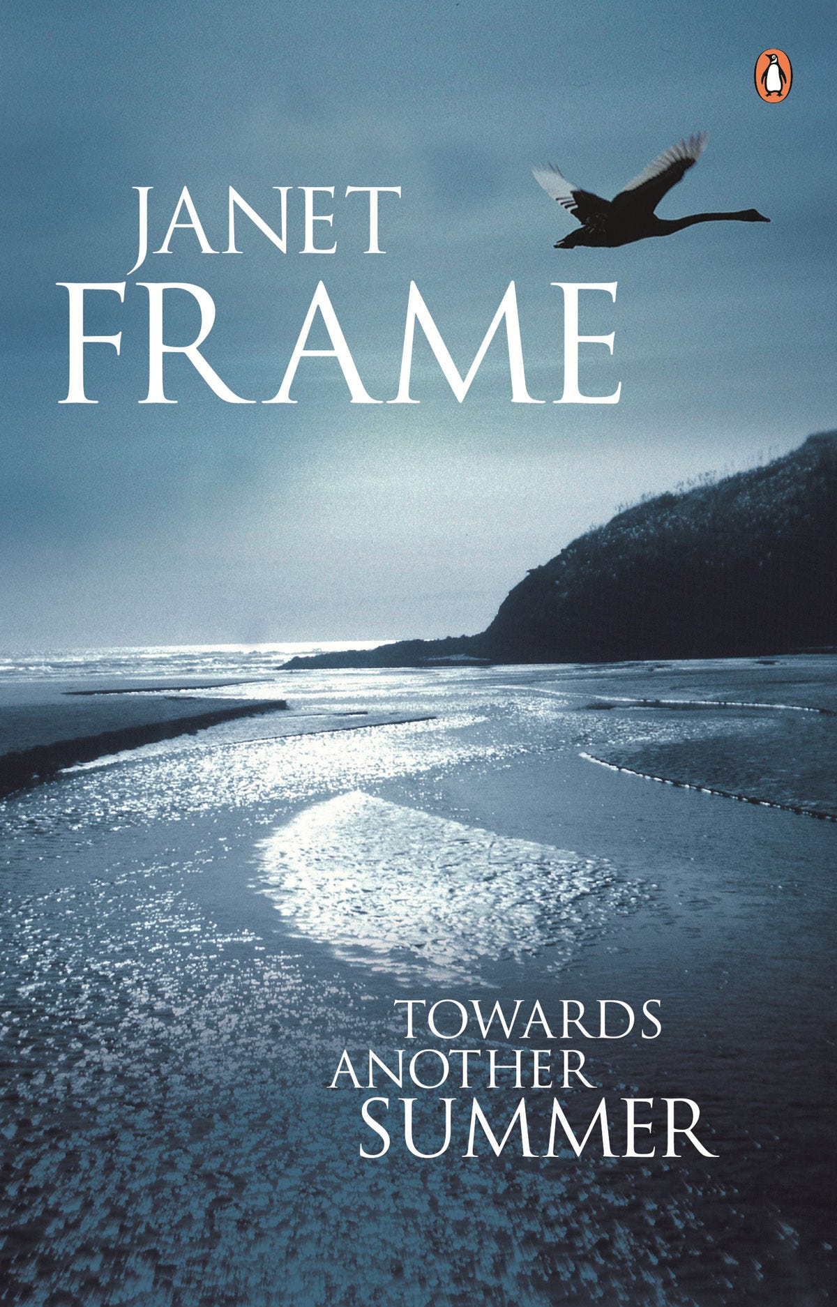 Towards Another Summer (by Janet Frame) Book Cover