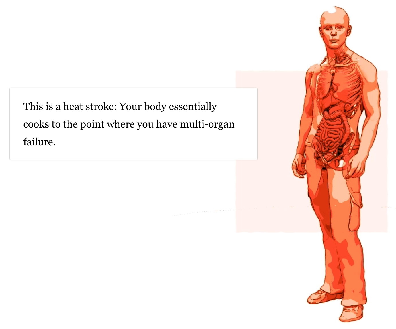 Graphic of a cutaway person showing the organs, all bathed in a hot red wash. A text block reads: This is a heat stroke: Your body essentially cooks to the point where you have multi-organ failure.