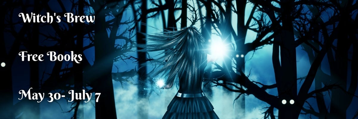 witch's brew banner with witch in a misty dark wood where trees have eyes