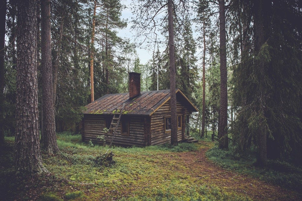 photo of brown wooden cabin in forest during daytime