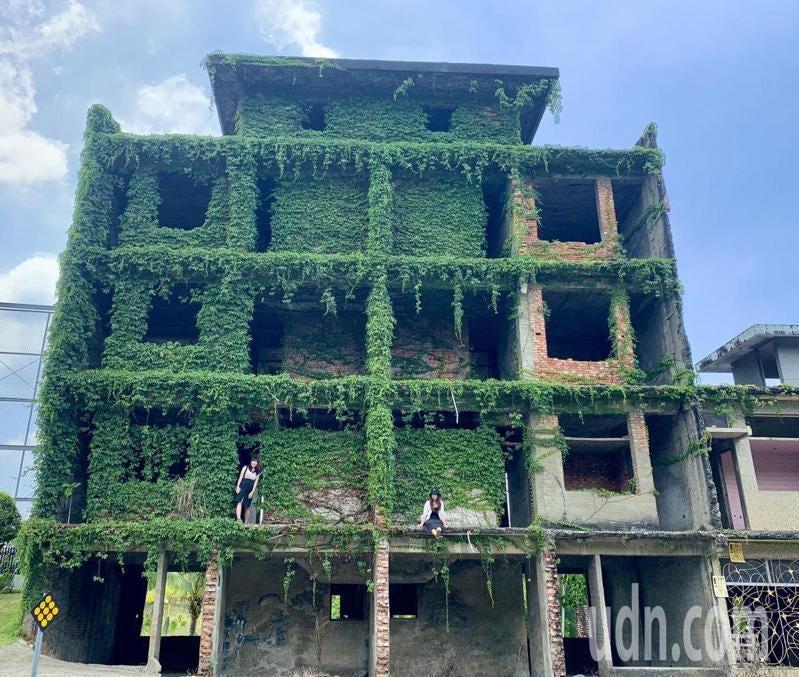 台南市新化區南172道路高爾夫球場旁閒置的廢墟建築,被網友稱為「綠巨人浩克的家」而爆紅,全台各地遊客絡繹不絕來朝聖,甚至爬上建築上面拍照,引發安全疑慮。記者吳淑玲/攝影