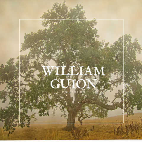William Guion Fine Art Photography