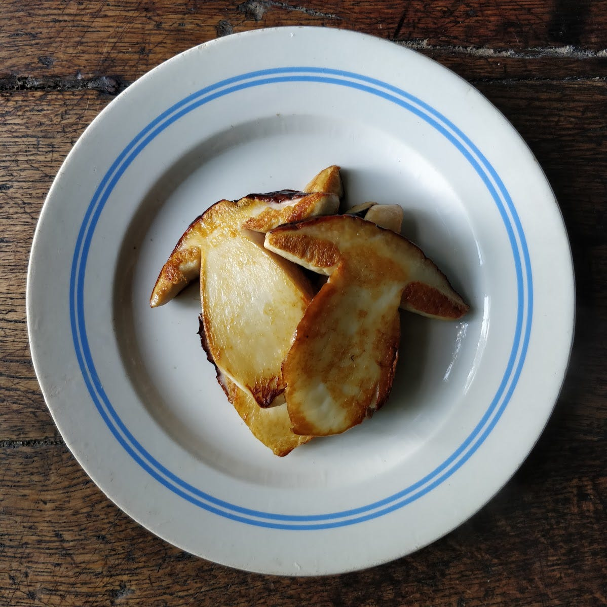 Boletus edulis, sliced and fried but otherwise unadorned, on a white plate with blue rings around the rim.