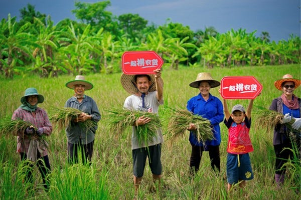 China's platform Pinduoduo spearheads farm-to-table push with online  matching