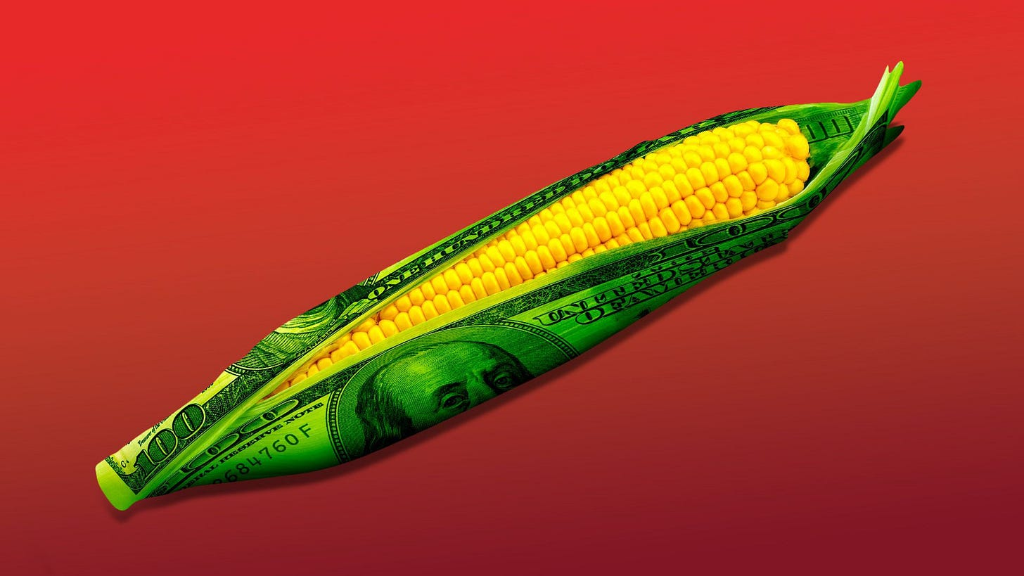 Illustration of an ear of corn with hundred dollar bills as the husk.