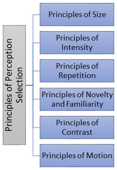 Management Studies: Principles of Perceptual Selection