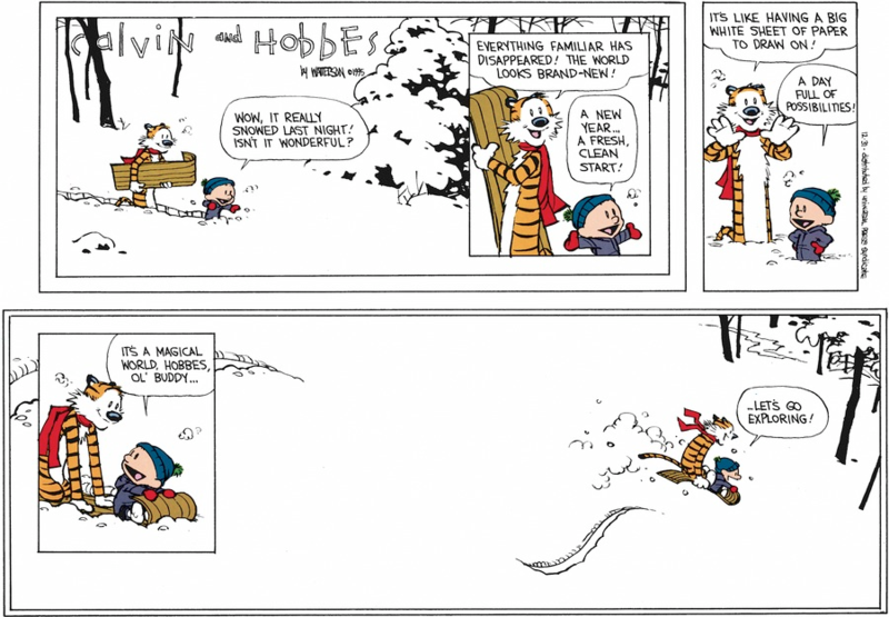 Image result for calvin and hobbes december 31 1995