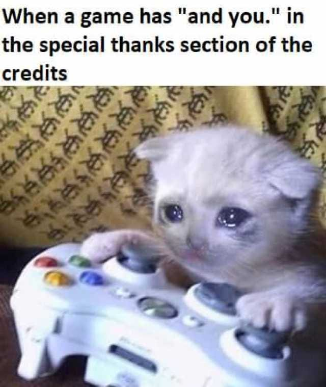 When a game has and you. in the special thanks section of the credits