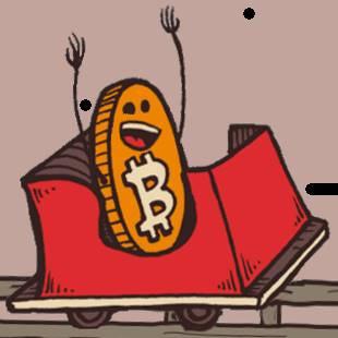 Bitcoin Roller Coaster Guy