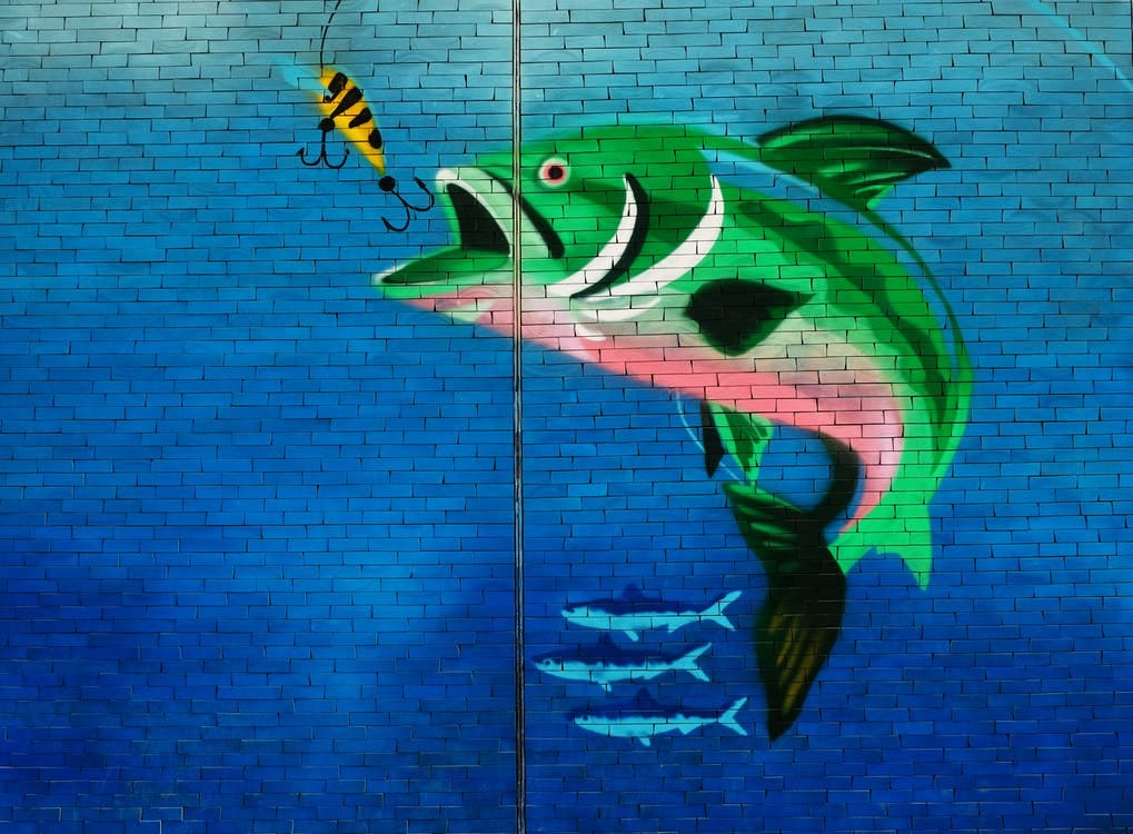 Green Fish About to Eat the Fish Hook Wall Art