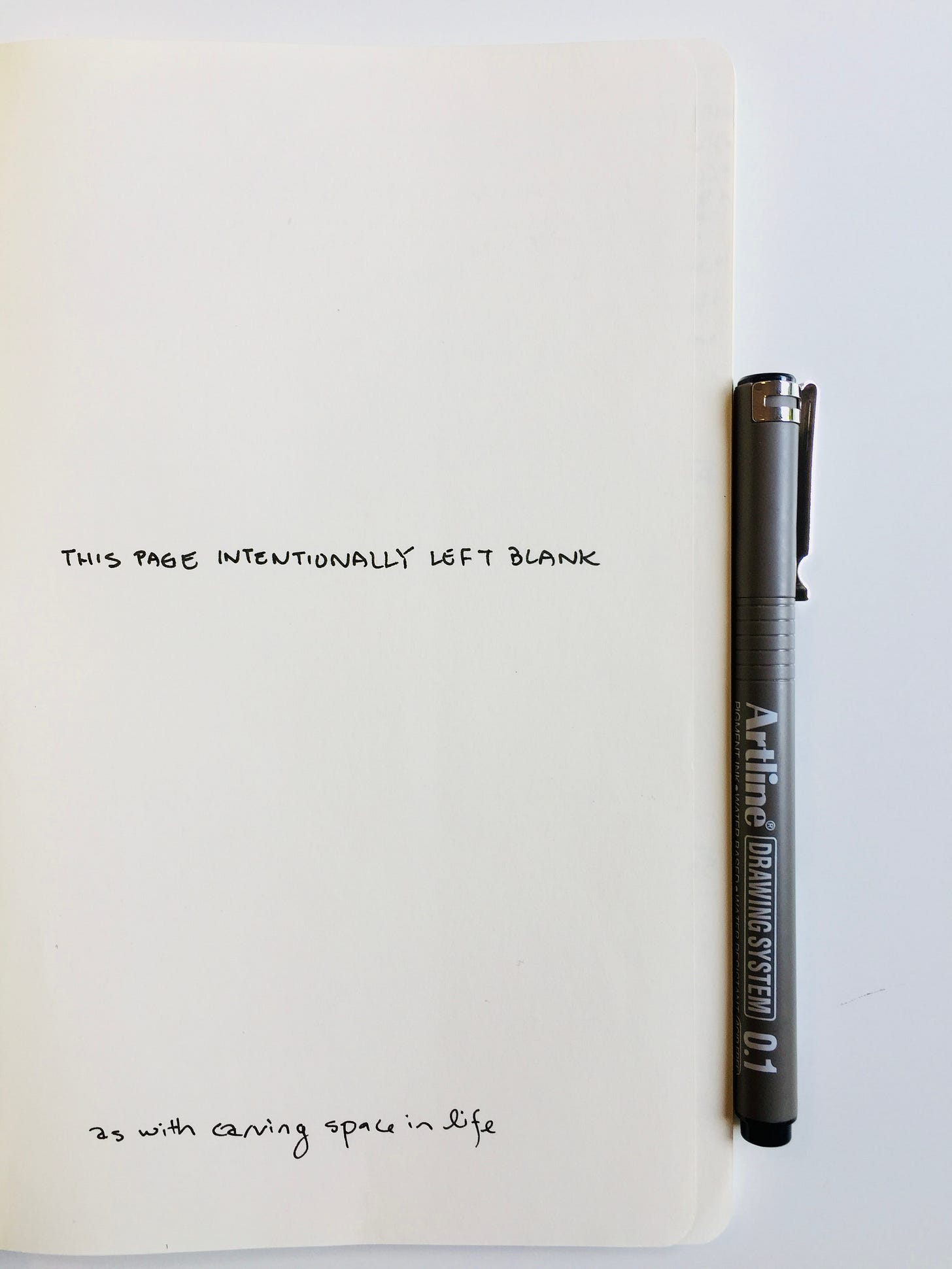 Photo of a page of a notebook with the handwritten words: This page intentionally left blank. As with carving space in life