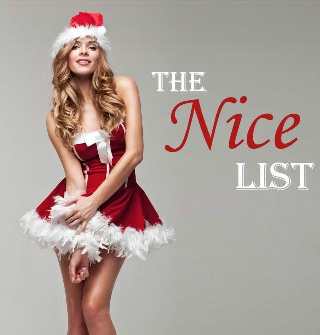 The Nice List, by Emma Austin