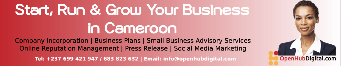 Openhub Digital - Company Incorporation in Cameroon