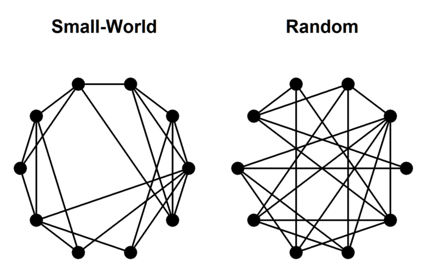 A small-world network and a random network. Adapted from ...