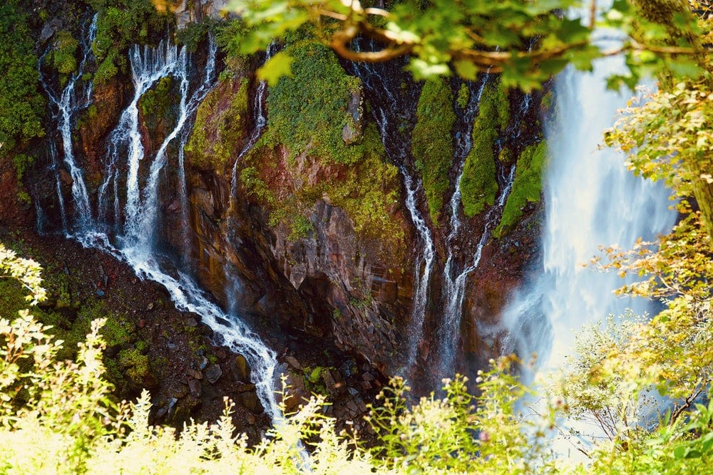 water falls in the forest