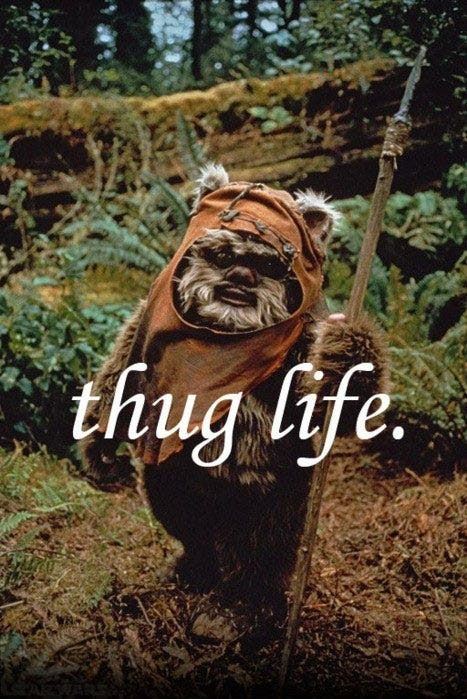 Ewok Life   Star Wars   Know Your Meme