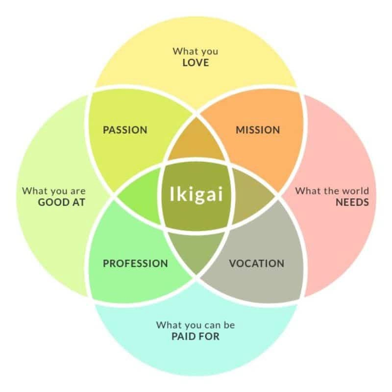Ikigai—living your life with purpose