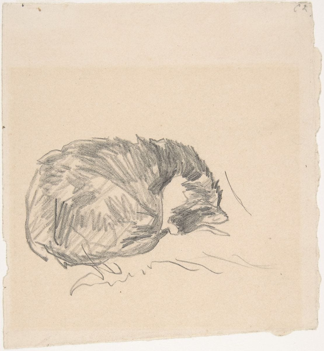 A Cat Curled Up, Sleeping, Edouard Manet (French, Paris 1832–1883 Paris), Graphite, on ivory-colored paper