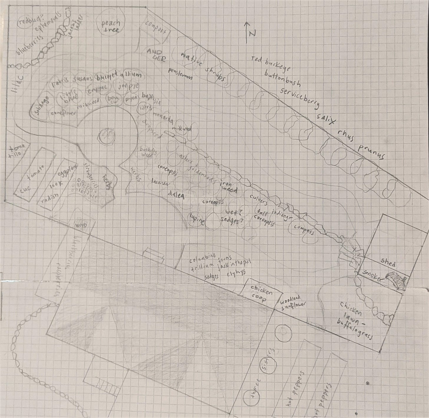Pencil sketch on graph paper showing the layout of a backyard.