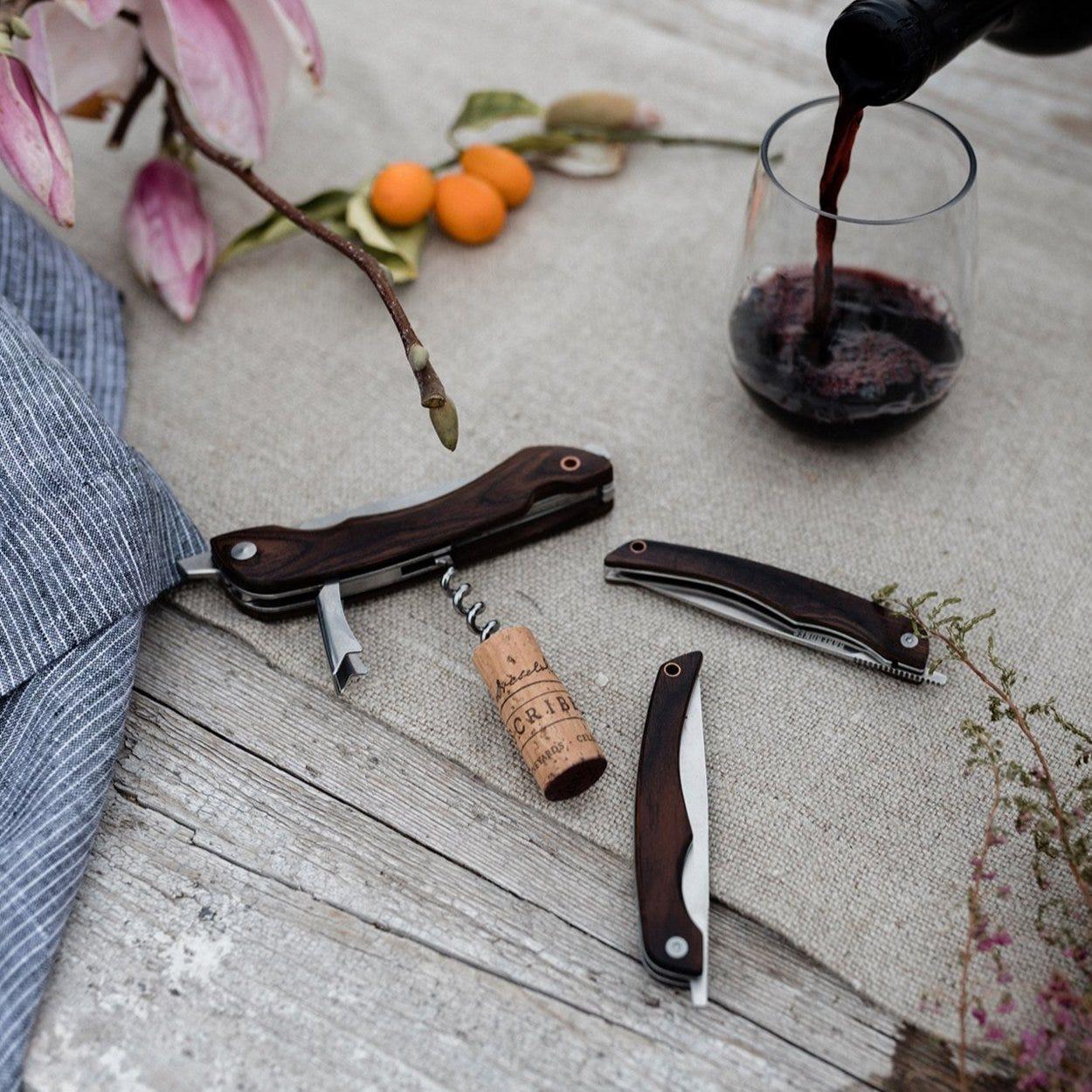 Folding Picnic Knife - Cool Material