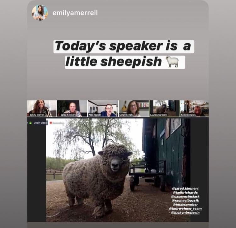 goat 2 meeting.jpg