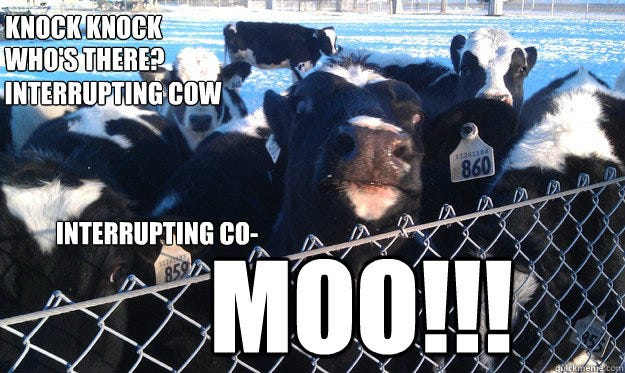 Brave and Happy: Interrupting cow!