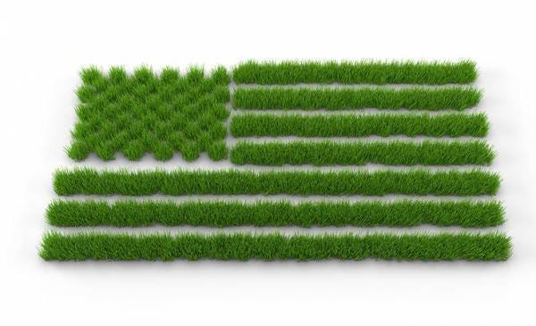 America Must Aim for a More Sustainable Future | Sustainability Academy