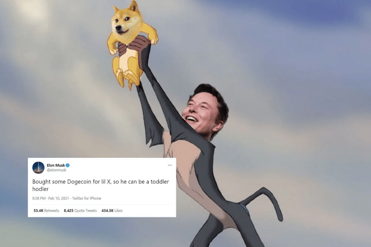 Elon Musk meme Dogecoin aconomics